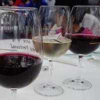 ルミエール・ワイン祭り~甥っ子たちと山梨へ
