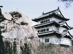 ひとりお花見部 2003 角館~盛岡~弘前城