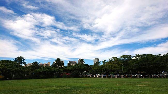 前回から5泊7日の旅程に切り替え、それでも楽しい時間は<br />あっという間なハワイの旅。<br />留守番をしている愛犬たちのことを考えると早く帰りたいし<br />まだこちらに残りたいし・・・