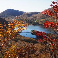 紅葉の赤城山 黒檜山から駒ヶ岳と草紅葉の覚満渕周遊ハイク♪