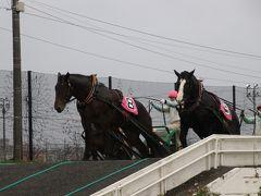 一度は見たい:ばんえい競馬を見に秋の北海道へ行ってきました
