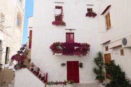 美しき南イタリア旅行♪ Vol.495(第18日)☆美しきモノポリ旧市街 花のある風景♪