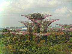 シンガポール 3泊5日の旅 1日目
