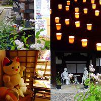巡る季節の途上 そんな京都の朝と夜の風景