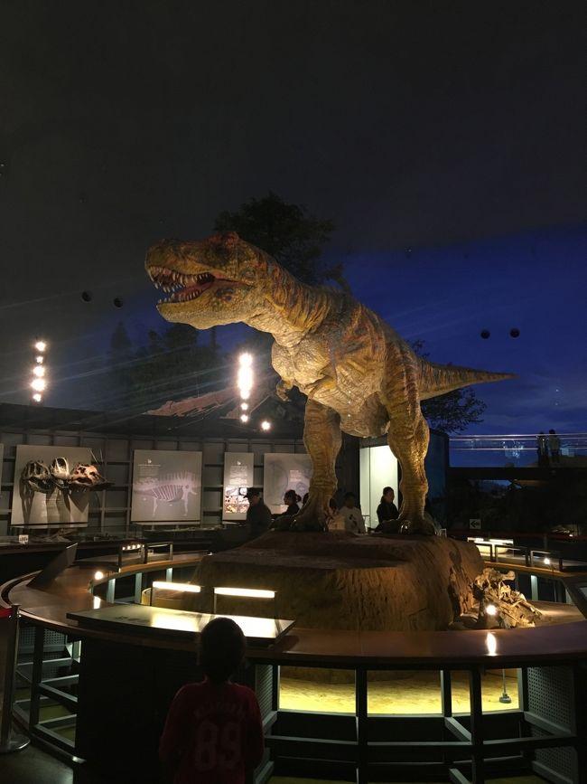恐竜の森で化石発掘?!福井勝山1泊2日