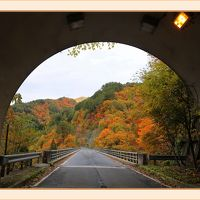 Solitary Journey [1960] 紅葉真っ盛り!秋色に染まった西中国山地を走る♪<八幡高原・標高1346mの恐羅漢山・餅の木林道>広島県山県郡