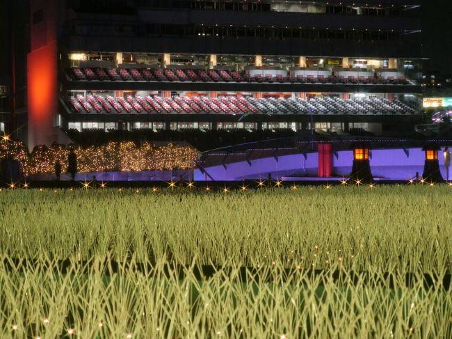今年、関東最大級の約800万球の大規模イルミネーションにバージョンアップした大井競馬場「TOKYO MEGA ILLUMINATION」に行ってみた。(因みに、ハウステンボスは1300万球、よみうりランドは600万球)<br /><br />※営業期間<br />2018年<br />11月10(土)・11(日)・17(土)~25(日)<br />12月 1(土)・2(日)・8(土)・9(日)・15(土)・16(日)・<br />22(土)~24(月祝)・28(金)<br />2019年<br />1月12日(土)~3月31日(日)<br />注;競馬の開催日程の変更等に伴い、休業日を設定する場合あり<br />※営業時間<br />平日 18:00~22:00<br />土日祝 17:00~22:00 <br />最終入園 21:00<br />※入場料:大人(18歳以上)1,800円、小人(小・中・高校生)1,000円<br />※アクセス<br />東京モノレール:「大井競馬場前」駅下車、徒歩2分<br /><br />