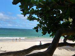 ハワイの風に吹かれて 「カイルア編」