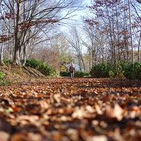 晩秋の北海道。余市ワイナリー初訪問とニセコ周辺