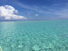 与論島2018~あまり知られていない?綺麗な赤崎珊瑚の森~