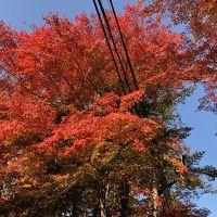 紅葉を見に軽井沢へドライブ