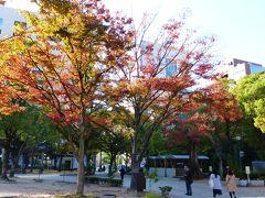 久し振りの福岡市内中心部散策【天神中央公園・アクロス福岡など散策編】