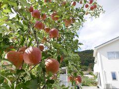 2018 りんごを買いに長野へ