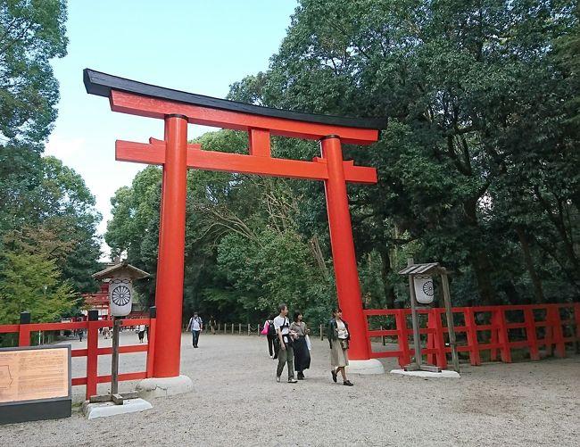 10月末にお友だちと京都へ~♪ご朱印集めてるので神社回ろう!!と秘かに思っていましたが、まさかの御朱印帳を忘れ、食べて飲むだけの旅になりました(笑)<br />