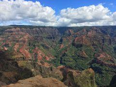 ワイメア渓谷展望台からの景観