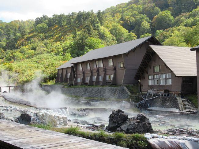 田沢湖駅から八幡平山頂へ紅葉と秘湯を求めて4泊5日路線バスの旅 その2「玉川温泉」