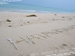 小浜島の旅行記