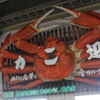 鳥取から城崎温泉へ、普通列車乗車とお手軽駅撮りで楽しむ。ラストは但馬空港から初ATR。