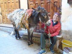 モロッコ訪問記『迷路の旧市街』古都フェズのメディナ