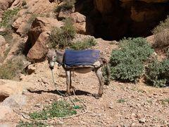 青い街シャウエンとサハラ砂漠を見てみたくて モロッコ時計回り1人旅 時々ネコもいるよ その6:トドラ渓谷編 ロッククライミングの聖地と日本人が経営する宿 のりこハウス