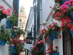 シニア夫婦のスペイン・ポルトガル周遊旅行(15)コルドバの花の小路