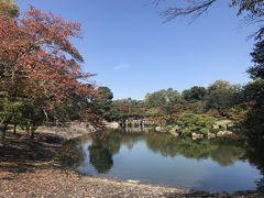 秋の京都2!仙洞御所見学・瓢樹でランチ・俵屋吉富で抹茶・相国寺で鳴き龍・イル・ギオットーネでディナー