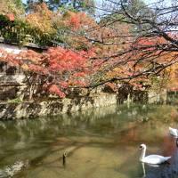 平成最後の秋!倉敷・美観地区の美しさにうっとり(*'▽')