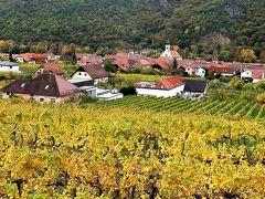 団塊夫婦のヨーロッパ紅葉を巡る旅・2018ー(14)オーストリア4・黄金色に輝くブドウ畑とかわいい町・ヴァッハウ渓谷を巡る