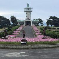 霧島ヶ丘公園のコスモスが綺麗、ついでにかのやばら園の薔薇を撮ってきました。   ☆鹿児島県鹿屋市