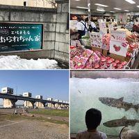 1day trip。日本最南端、鮭の遡上を見に、そして、話題の「あられちゃん家」へ