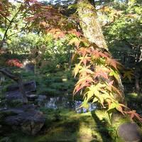 念願の京都/前編 憧れの南禅寺別荘群・小川治兵衛の作庭を見に♪