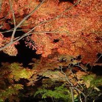ジェットでびゅ〜ん!!&レンタカー/宮城&山形定番観光地をじっくり!?+紅葉と温泉5泊6日・その1