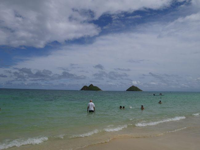 2日目からの続きです。<br /><br />3年ぶりのハワイ旅行は初の子連れ旅行。<br />こちらでいろんな方の子連れ旅行の旅行記読んで参考にして行きました。<br />これから子連れ旅行をする方の参考になるかはわかりませんが、<br />読んで頂けたら幸いです。<br />途中寄った場所などで利用したトイレにオムツ替えの台があるか書いてあります。<br /><br />メンバーは<br />夫<br />私(コロタン)<br />息子(コロ助、2歳3か月)<br /><br />航空券: JAL特典航空券1名分+大人1名¥112,190+子供1名¥88,650<br />ホテル:ワイキキバニアン(Airbnb利用)¥161,669<br />レンタカー:ハーツレンタカー フルサイズ8日間 $393.22<br /><br />10/16 JAL780 NRT20:40 HNL8:50着<br />10/23 JAL789 HNL14:50 NRT18:30着