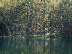 渋滞5時間超の「静寂に包まれる奥蓼科 自然にときめく□の絶景5景『御射鹿池』『白駒の池』『苔の森』『乙女滝』『霧降の滝』(三鷹・調布発)」バスの旅 part1