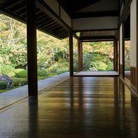 まだすこし紅葉には早いですが 混雑を避けての京都 泉涌寺雲龍院と鷹峰の源光庵に行ってみました 2018No2