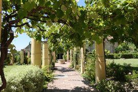 美しき南イタリア旅行♪ Vol.535(第19日)☆美しきヴァスト宮殿の庭園 青いブドウ棚♪