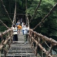 4世代旅行!高知・徳島2泊3日、雨にも負けずの大満足旅。1日目。昼は祖谷のかずら橋渡りを楽しみ、夜は藁焼き鰹たたきに舌鼓!