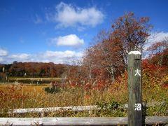 今年の紅葉狩りは八幡平の大沼で
