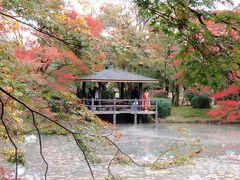京都で楽しむ紅葉(二日目)ー糺の森、下鴨神社、上賀茂神社、府立植物園ー