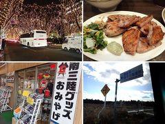 冬の東北(1)東北新幹線グリーン車で杜の都仙台へ