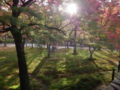 そうだ、今週も京都へいこー。ふらっと東福寺の紅葉へ。
