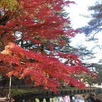 紅葉の岩出山