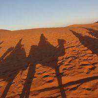2018.10 憧れのモロッコ7つの世界 遺産感動物語10日間はこんなツアー