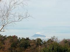 伊豆半島にも秋の訪れ