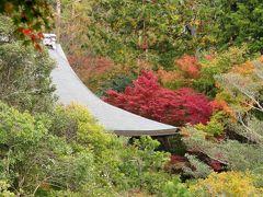 京都の紅葉を楽しむ旅三日目ー龍安寺と仁和寺ー