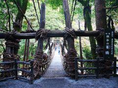一泊二日で定番を巡る高知・徳島・香川 急ぎ足の旅 そしてJGC到達!