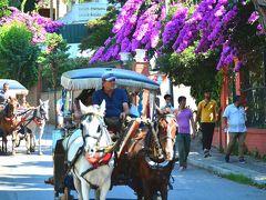 """エーゲ海の眩しい夏色一人旅トルコ&ちょこっとギリシャ Vol.9 貴族が愛したイスタンブールの離島""""プリンセス諸島""""はブーゲンビリアの宴と馬車の島"""