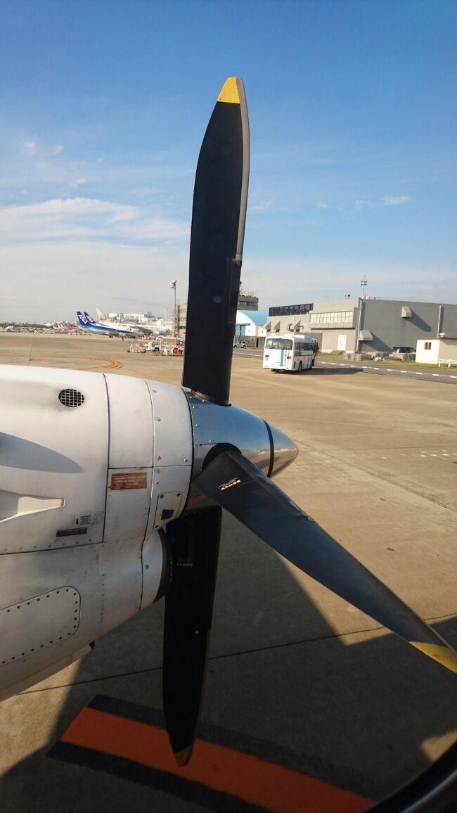 """サーブ340Bで福岡~出雲が主目的ですが、<br />JAL First Classで羽田~福岡も楽しむ旅。<br /><br />昨年末にもスーパードルフィン搭乗等で<br />訪れた""""絶賛工事中""""の福岡空港ですが、<br />その後はどのような変貌を遂げているので<br />しょうか。<br /><br />今回は、待望のSF3搭乗は勿論ですが<br />宿泊ホテルも素晴らしく、天候にも恵まれ、<br />全てにおいて大満足の旅となったのでした。<br /><br />※SF3ですが、2019年3月には退役の予定。<br /> 半ば諦めていたのですが、何とか間に合って<br /> 良かったです。<br /> (後継機の日本到着が実はこの日だった)<br /> <br />旅程<br />【往路】<br />ANA 384   YGJ→HND  Premium class<br />JAL 315    HND→FUK  First Class<br />[宿泊]<br />ANA  クラウンプラザホテル福岡 <br />【復路】<br />JAC3555   FUK→IZM<br /><br />※2019年2月8日<br /> ターボプロップエンジの動画を公開<br /> タイトルの一部変更と本文中に加筆。"""