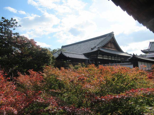 京都市東山区にある、東福寺に行きました。<br />もの凄い人出で、通天橋は例年の如く混雑している様子でした。<br /><br />東福寺本堂ー通天橋ー開山堂ー偃月橋ー龍吟庵ー八相の庭ー即宗院<br /><br />こういう順路で廻りました。<br /><br />紅葉はこれからが本番の様で、12月初旬が一番の見頃かもしれません。<br />年々、京都の紅葉は遅くて、早く見頃が終わるようです。<br />桜ほどではありませんが、紅葉を楽しめる期間が短いようです。<br /><br />東福寺 http://www.tofukuji.jp/ <br /><br />京都市観光協会 http://www.kyokanko.or.jp/taxi/taxi_0018.phtml <br /><br />紅葉だより https://kanko.city.kyoto.lg.jp/feature/momijidayori.php <br /><br />
