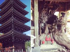 仙台観光~仙台城跡と定義山